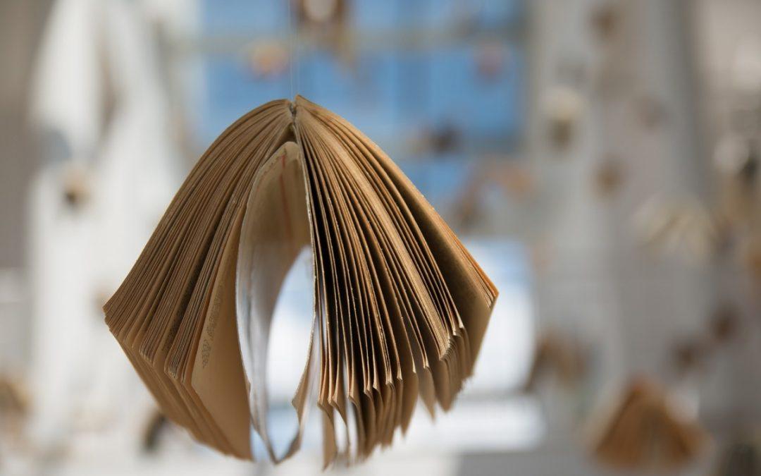 Consignes d'accueil du public à la bibliothèque LCAO