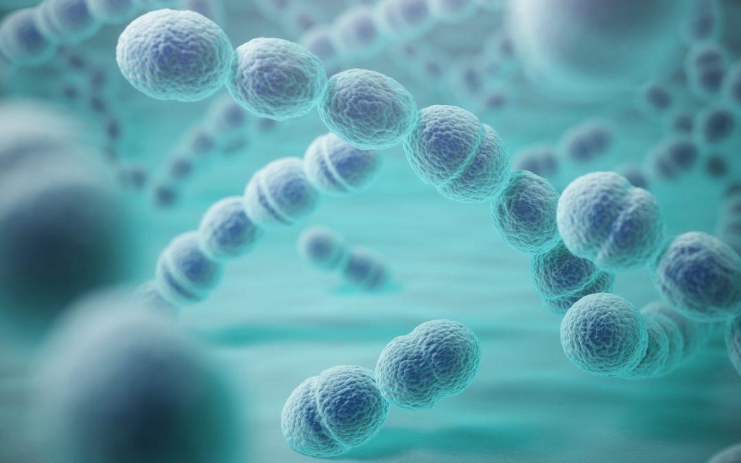 La Faculté de Santé crée l'Institut Microb'UP