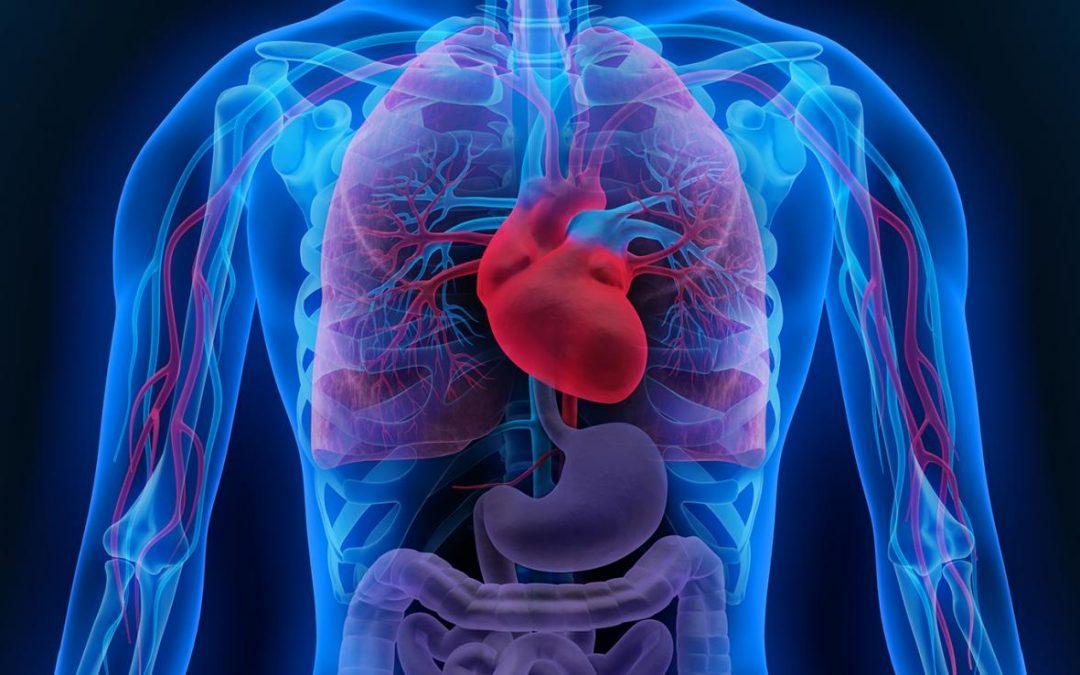 Avancées majeures dans le diagnostic et le traitement du rejet d'allogreffe