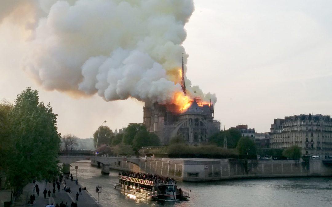 Les retombées de plomb liées à l'incendie de Notre-Dame cartographiées dans le miel