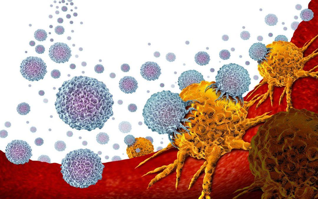 Premiers résultats nationaux de l'immunothérapie cellulaire par CAR T-cells dans les lymphomes