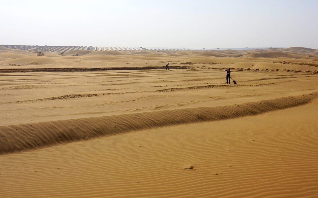 Une expérience à l'échelle des paysages révèle comment la taille des dunes est sélectionnée