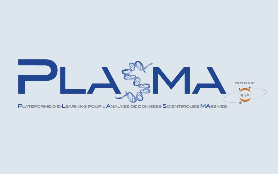 Hybridation pédagogique : découvrez et expérimentez PLASMA